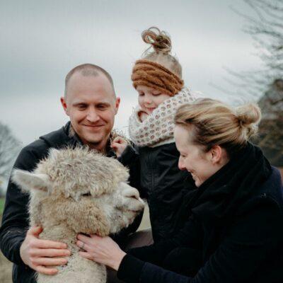 Alpaca Project